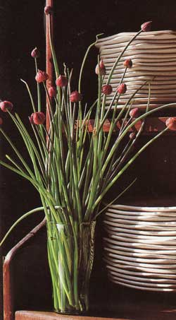 opt-supermarket-bouquets_.jpg