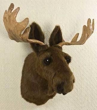 Stylefile 15 oh dear no deer nibs - Fake moose head ...