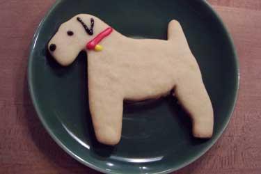 opt-cookies.jpg