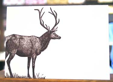 opt-deer-card.jpg