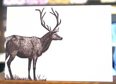 opt-deer-card.jpg