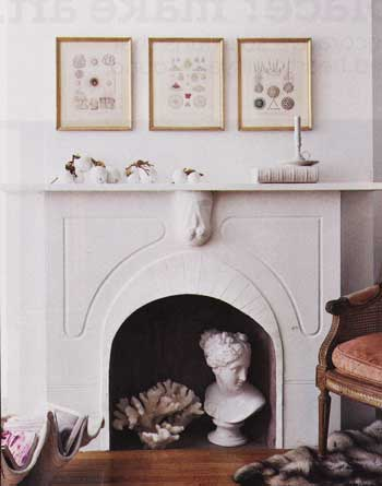 opt-head-in-fireplace.jpg