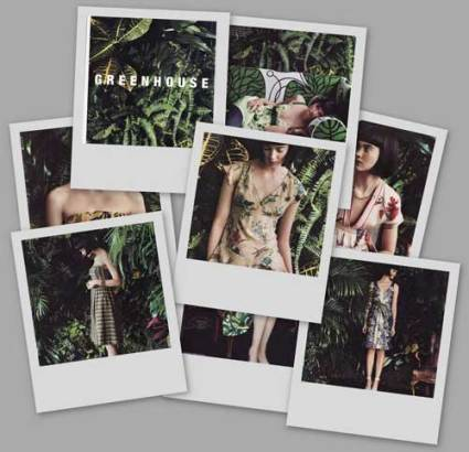 opt-collage-of-jungle.jpg