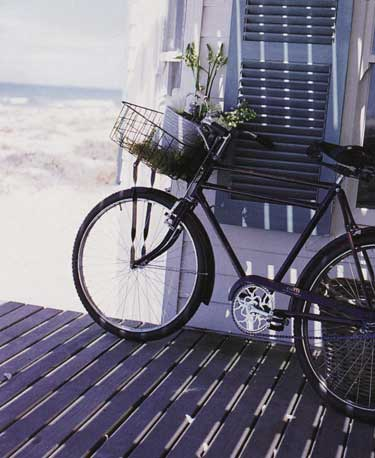 opt-bike-with-basket-beach.jpg