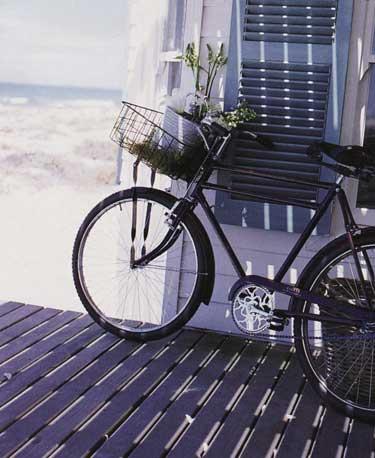 opt-bike-with-basket-beach.jpg