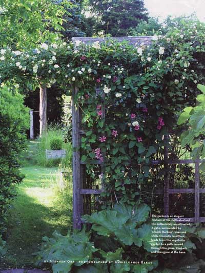 opt-white-garden.jpg
