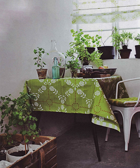 green-plants-kitchenopt