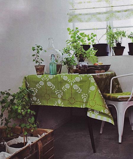 green-plants-kitchenopt