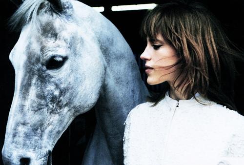 horse&rider-opt