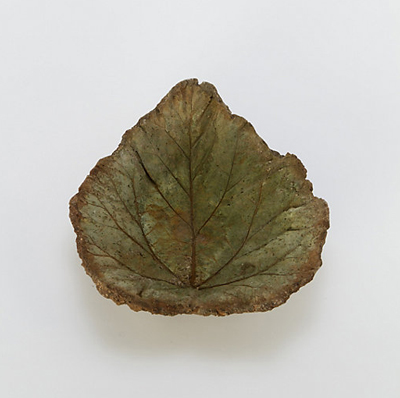 leaf-birdbath-terrain-opt