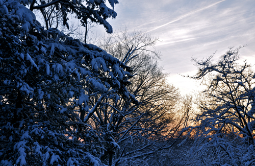wintersunrise01-opt