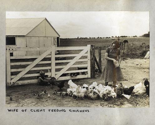 optcountrygirl-feeding-chickens