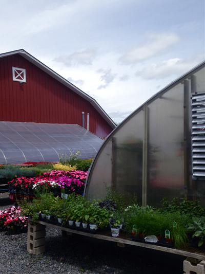 farmgardenplants-opt