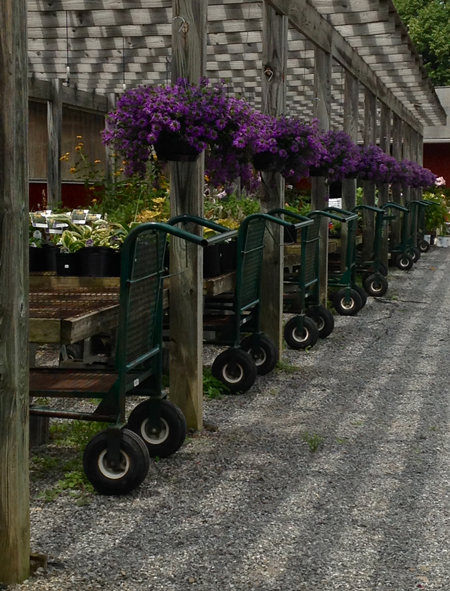 gardencartsplantnursery-opt