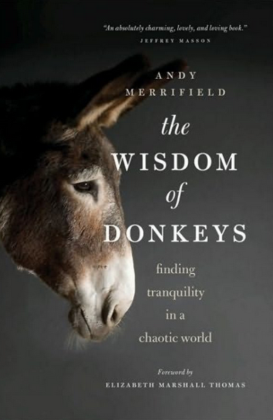 wisdom of donkeys book cover