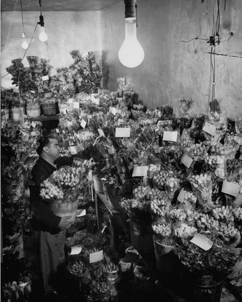 flowershop1952