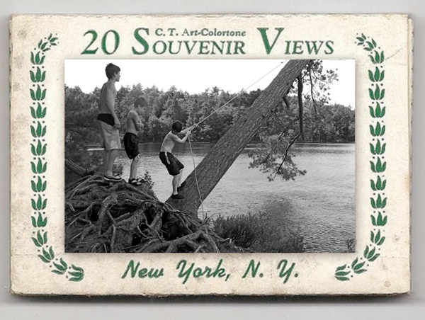 souvenirviewsNY01-opt