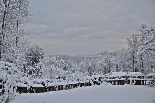 snowstorm0117-opt